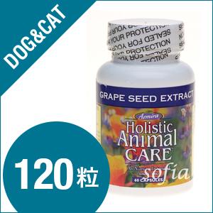 アズミラ Azmiraグレープシードエクストラクト 120カプセル (犬・猫用) 【サプリメント】【ペットフード】【低アレルギー・対策】