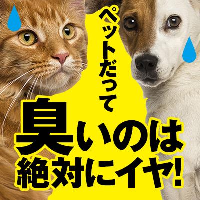 きえ~る 500ml入り 詰替用 ( バイオ消臭剤) 【ペット・室内用】【犬・猫用】