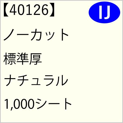 40126 ノーカット 標準厚 ナチュラル 1,000シート