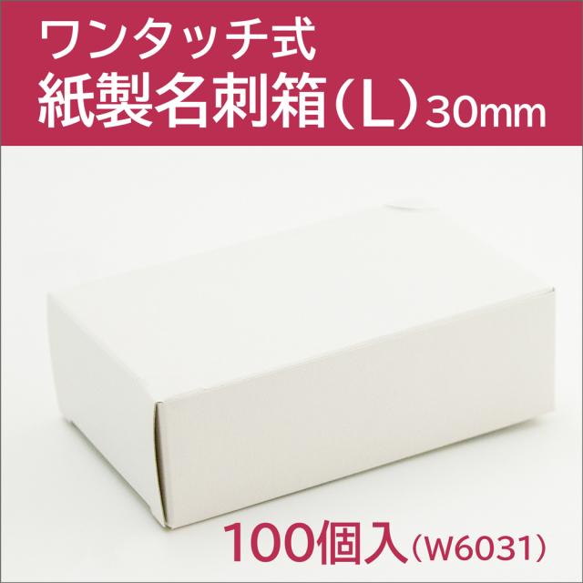 W6031