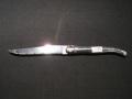 ラギオール ナイフ 2
