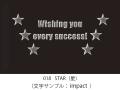 018 STAR イラスト&文字入れ 加工内容確定後「7営業日」仕上げ