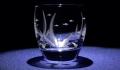 ウォーターウィード酒杯