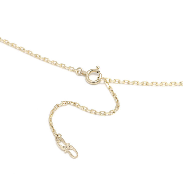 K10Yellow Gold 0.42 Square Chain