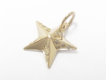 Rustic Star Pendant - Small - K10 Yellow Gold w/Diamond