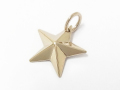 Rustic Star Pendant - Small - K10 Yellow Gold