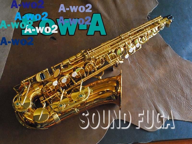 YANAGISAWA A-WO2 ブロンズモデル アルトサックス 美品