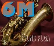 C.G.CONN 6M  オリジナルラッカー90% 31万番台 OH済