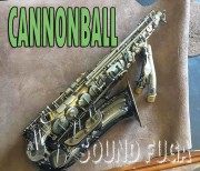 "Cannonball GA5-SB ""Gerald Albright Model"" アルトサックス"