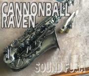 CANNONBALL A5-BiceB Raven アルトサックス 良品