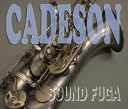 CADESON T-902AS HighF#付 テナーサックス