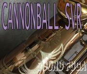CANNONBALL SVR-L ダークアンバーラッカー ソプラノサックス 美品