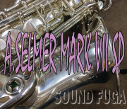 H.SELMER MarkVII マーク7 銀メッキ 27万番 ギャランティカード付 アルトサックス
