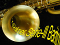 限定1本★新品★ H.SELMER SERIE2 ブラッシュドサテン バリトンサックス