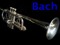 BACH STRADIVARIUS C180L MODEL239SP C管トランペット 美品
