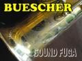 ★決算セール★ BUESCHER SP TRUE TONE GP  金メッキ ソプラノサックス OH済 良品