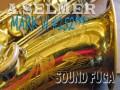 A.SELMER MARK VI 彫刻付 15万番台 オリジナルラッカー テナーサックス