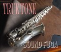 ★Weekly Sale★ BUESCHER TRUE TONE ALTO 銀メッキ アルトサックス OH済