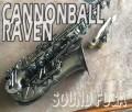 第2弾★祝・令和元年セール★CANNONBALL A5-BiceB Raven アルトサックス 良品