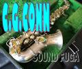 ◆決算セール◆C.G.CONN New Wonder SP GOLDインレイ 超希少 カーブドソプラノサックス