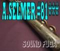 A.SELMER MARK VI 81千番台 オリジナルラッカー 超希少 ソプラノサックス