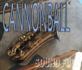 CANNONBALL TV-PC-L 限定200本  テナーサックス美品