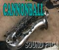 """CANNONBALL T5 BiceB """"RAVEN"""" テナーサックス"""