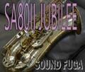 H.SELMER SA-80II  Jubilee 76万番台 テナーサックス