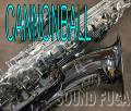 ★オータムセール★ CANNONBALL GT-5SB Gerald Albright Signature Model テナーサックス