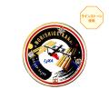 ピンバッヂ 金井宇宙飛行士 ISS54/55 メイン