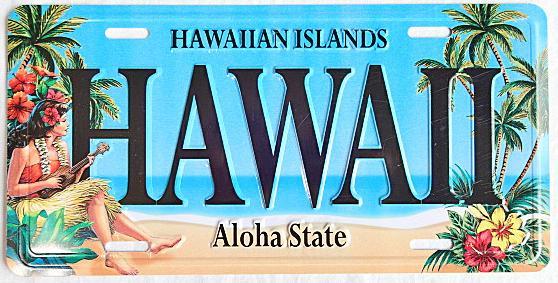 【ハワイアン雑貨・最安値を目指します】ハワイアン看板/ハワイVN