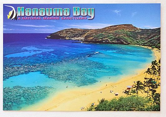 ハワイアン・ポストカード/ハナウマベイ