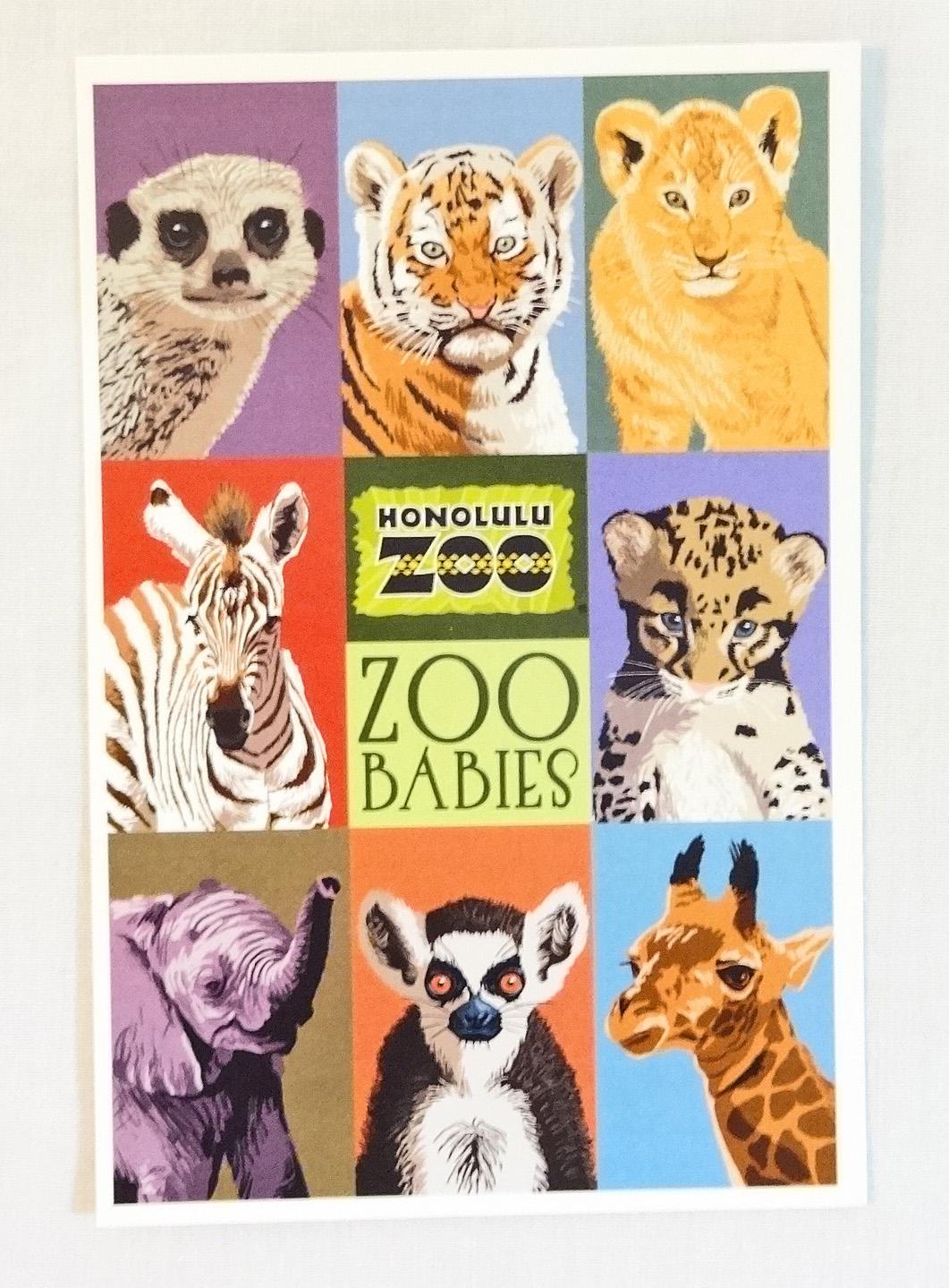 【ホノルルZOO限定】ハワイアン・ポストカード/Zoo Babies