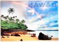 ハワイアンマグネット/レインボー