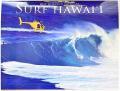 【ハワイアン雑貨・最安値を目指します】ハワイアン・カレンダー2015/サーフハワイ