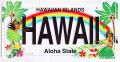 【ハワイアン雑貨・最安値を目指します】ハワイアン看板/ハワイ