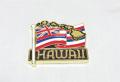 ハワイアンマグネット/ハワイアンフラッグ