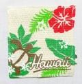 ハワイアンマナコースター/モンステラホヌ
