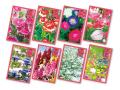名刺型花の種子(1P)