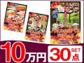パネードセット 【 10万円 30点 】 送料・消費税込み   二次会景品におすすめ