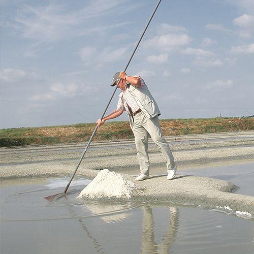ゲランドの塩・参考画像