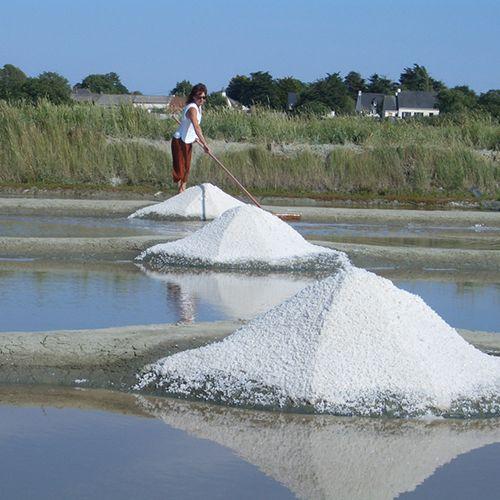 ゲランドの塩・参考画像2