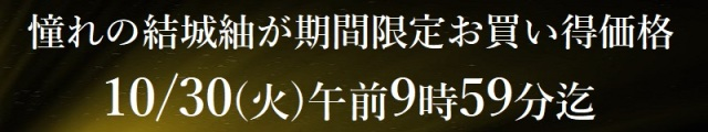 結城紬九寸名古屋帯 5万円
