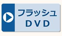 星みつる式・フラッシュカードDVD