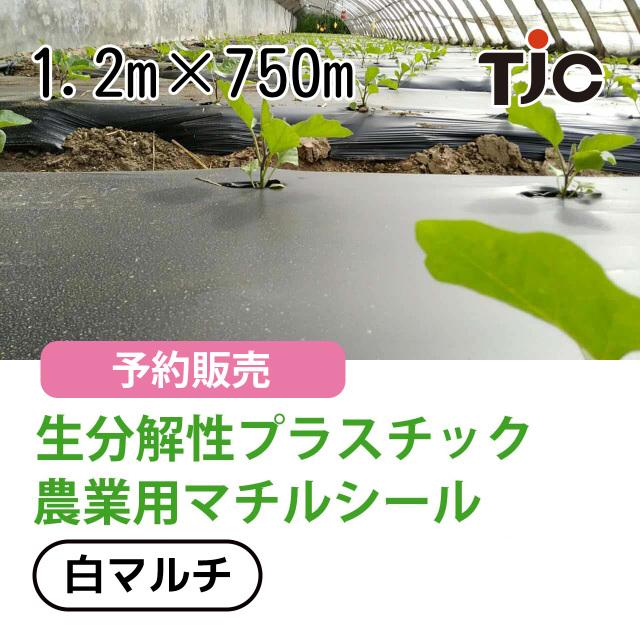 生分解性プラスチック 農業用マルチシート 1.2m×750m 白マルチ PLAポリ乳酸