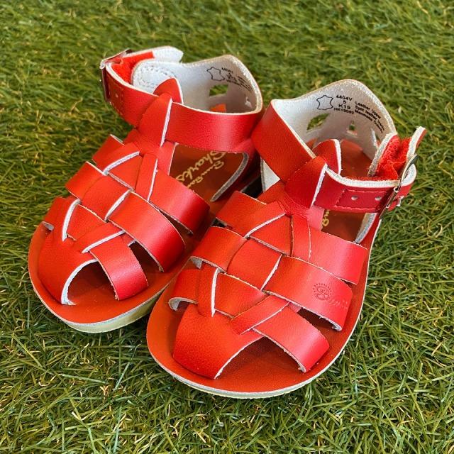 【Salt Water Sandals(ソルトウォーターサンダル)】Sun San Sharks(ベルクロ)/Red赤/13.3cm~19.2cm