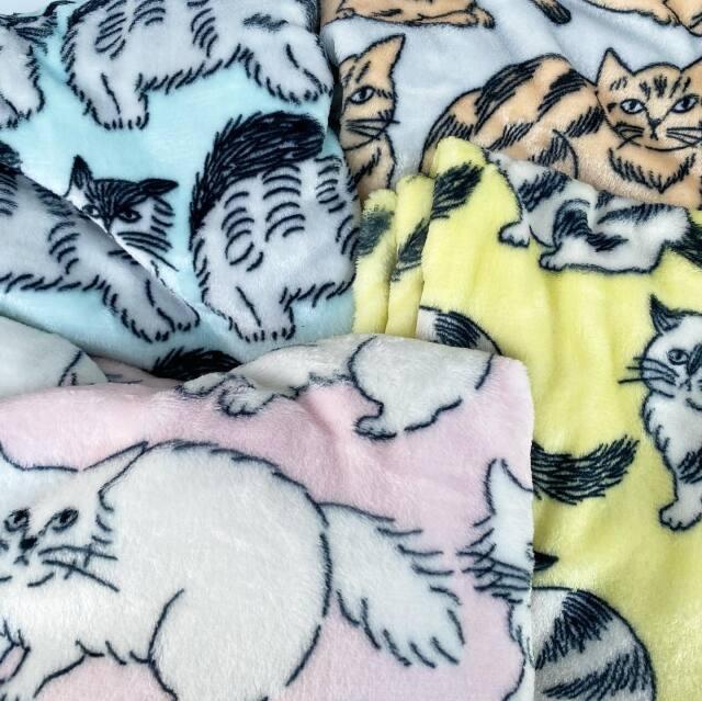 【松尾ミユキ】Warm blanket Cat