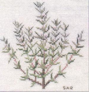 〔Fremme〕 刺繍キット 17-4659