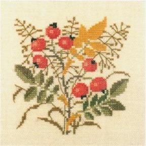 〔Fremme〕 刺繍キット 30-6266