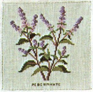 〔Fremme〕 刺繍キット 17-4661